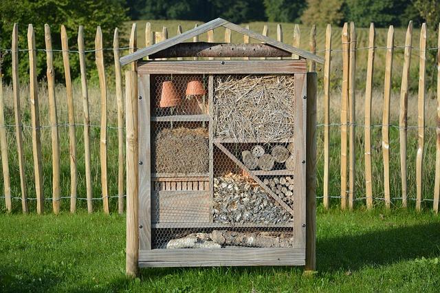 Poleg sadovnjaka postavite hotel za žuželke
