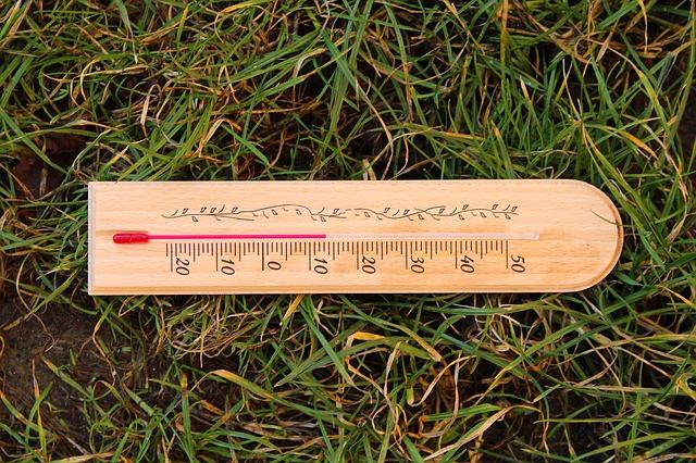 Delo na vrtu določa temperatura zemlje, ne zraka!