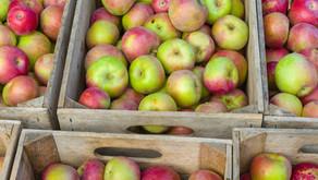 Kako skladiščimo sadje?