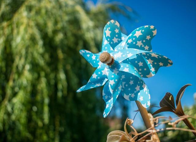 Vetrovna lega zmanjšuje prisotnost čebulne muhe
