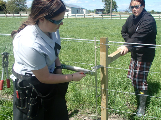 Farm fencing gives students essential experience