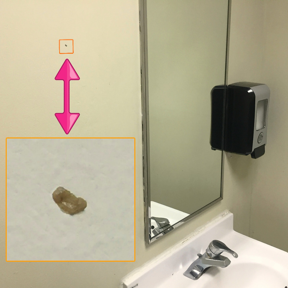 Gross person put booger on 24 hour fitness' bathroom wall months ago