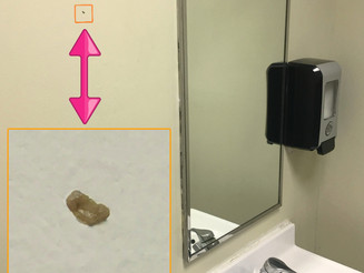 Booger on Business' Bathroom Wall For Months