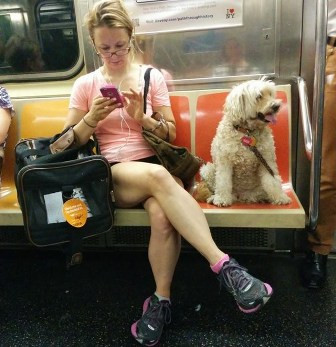 Woman taking up 3 seats on the subway with her dog and bags