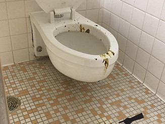 Man Leaves His Crap All Over The Bathroom . . . Literally