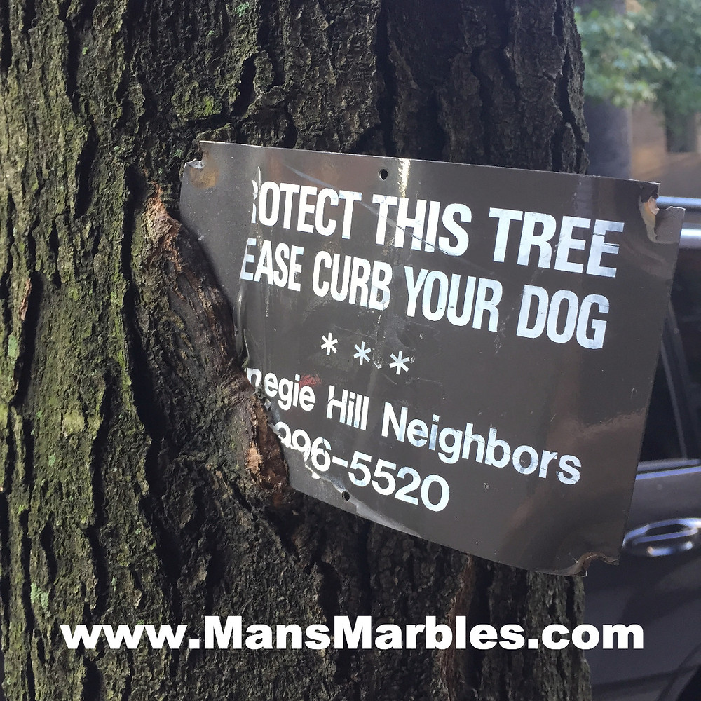 Please curb your dog sign damaging a tree