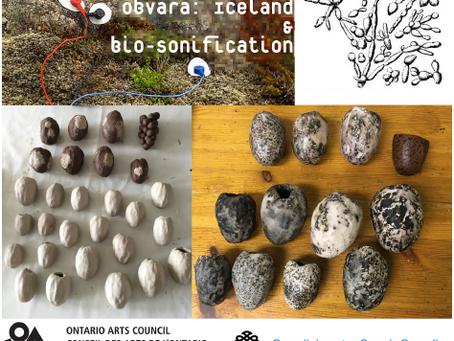 MYNDLISTASKÓLINN Í REYKJAVÍK – THE REYKJAVIK SCHOOL OF VISUAL ARTS