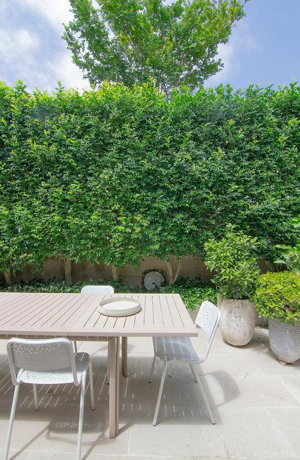 ssd studio_Double Hosue_Courtyard.JPG
