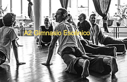 A2 Gimnasio Escénico_edited