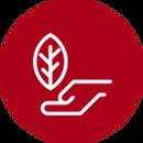 circulo-icon-04.png