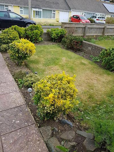 garden1.jfif