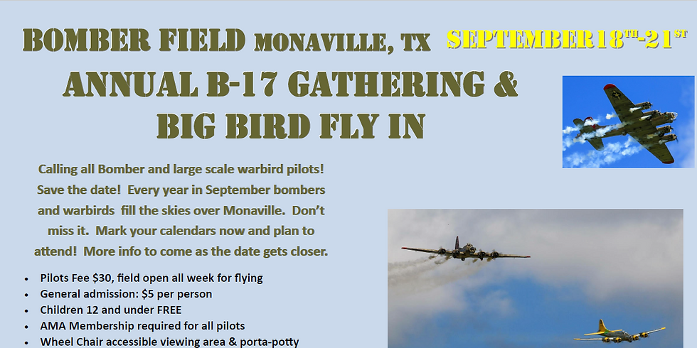 2019 B-17 and big bird fly in