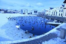 Frozen lake, Iceland