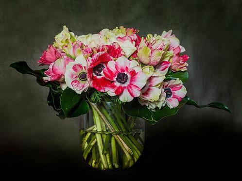 Tiger Mistral Anemone Floral Crate