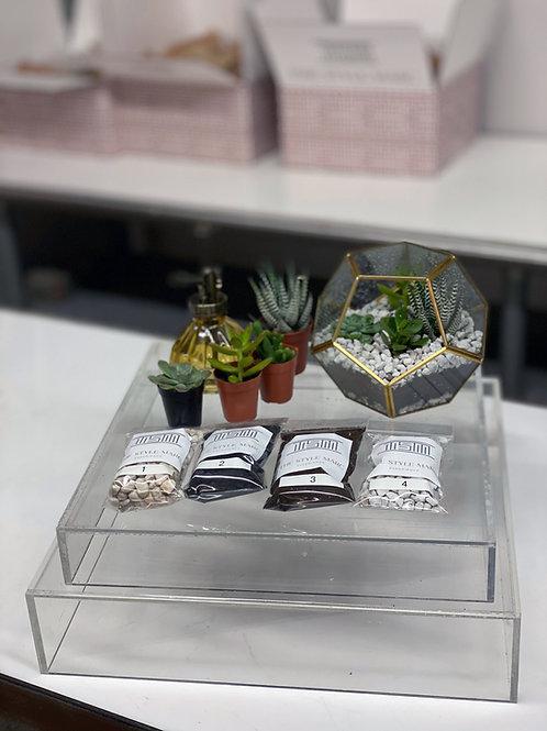Terrarium Design Box