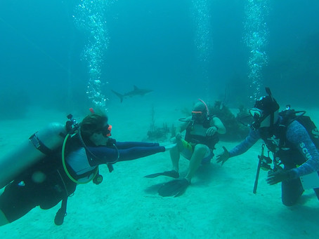 Scuba Diving: My Favorite Inclusion at Sandals & Beaches Resorts