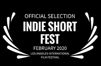 INDIE SHORT FEST - FEBRUARY 2020