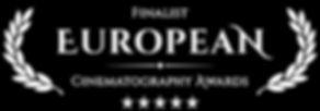 European CA finalist_whtblk.jpg