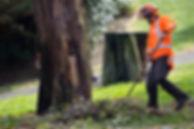 Property tree maintenance