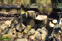 Firewood & Mulch for sale