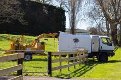 Tree service Waikato