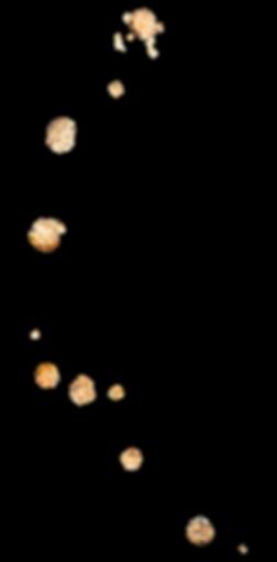 splash(gold) (2).png