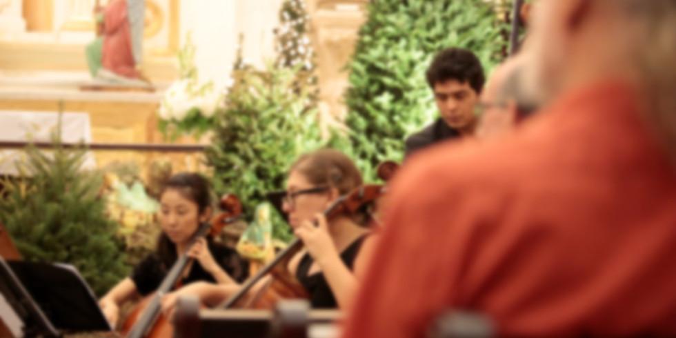 Concierto - Orquesta de Cámara