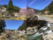 H31-kuta-spring.jpg