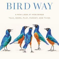 bird way.jpg