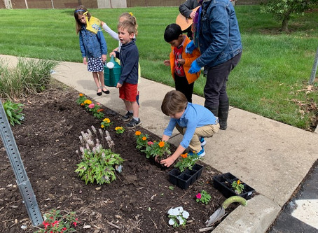 Children Learn Good Earth Stewardship