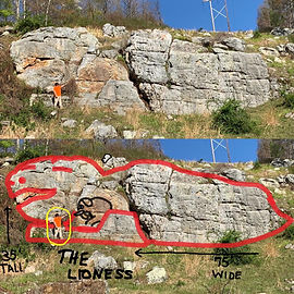 Lioness and Matt 3 split photo.jpg