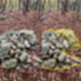 resting buffalo tower mound.jpg split ph