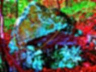 Ahmed bench rock.JPGmammoth circled.jpg
