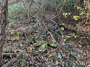 burial mound upper serpent wall.jpg