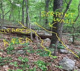 serpent wall.jpg