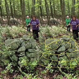 sharon ellen.JPG split photo.jpg