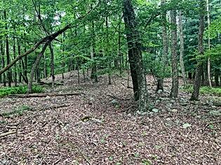 earthen mound looking sw.JPG