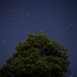Night photography.