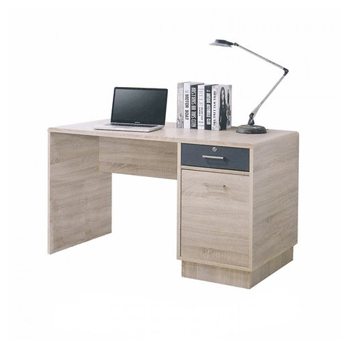 SAMSON Work Desk