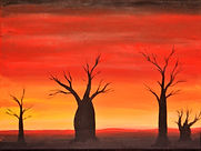Boab Sunset