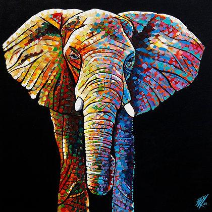 Elephant (Kani)