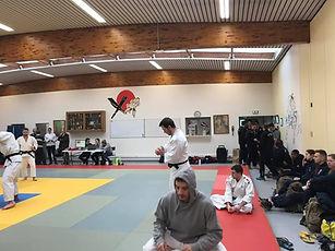 judo 2.jpg