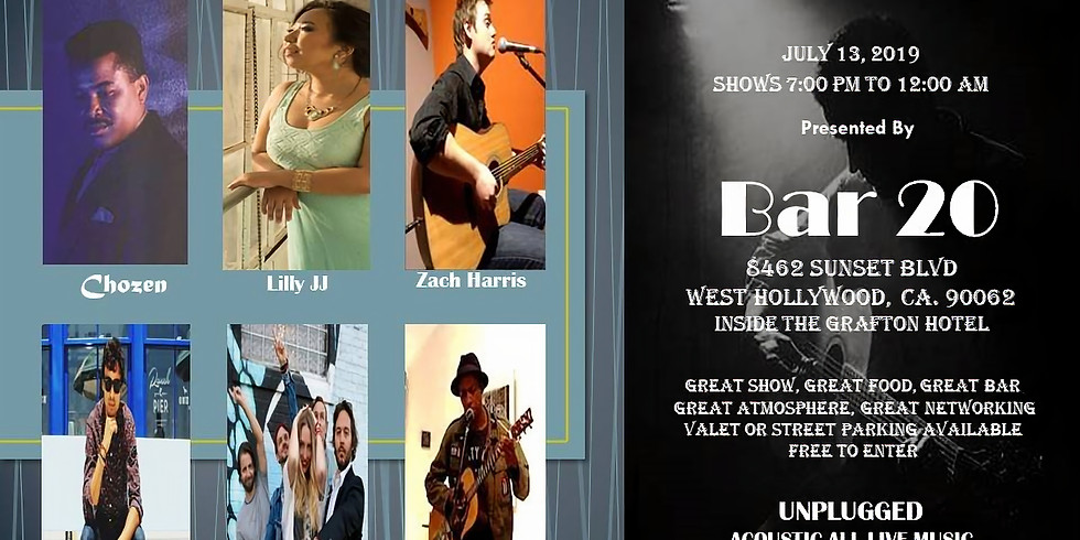 Unplugged Acoustic Live Music