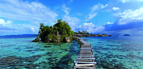 Sulawesi-Guide-1140x550.jpg