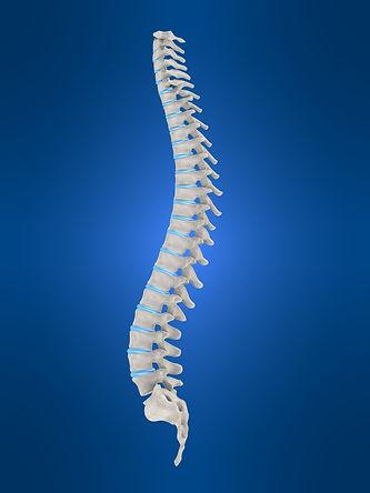 Spinal_cord_injury.jpeg