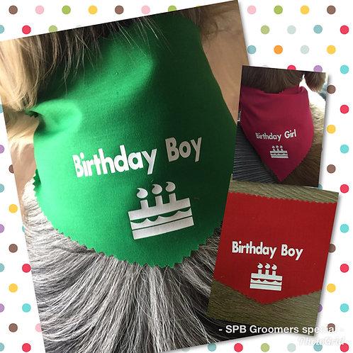 Birthday Boy/Girl Basic Necktie Bandanas