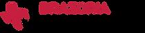 Brazoria Responds Logo Horizontal CMYK-0