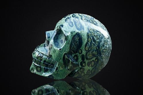 Crâne en Jaspe Kambaba 4,2 kilo
