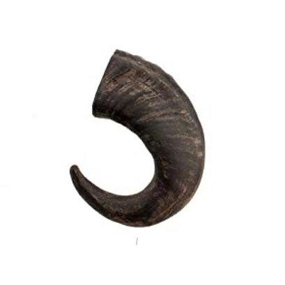 Large Buffalo Horn