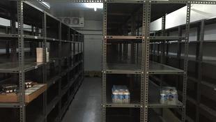 light duty shelf.JPG